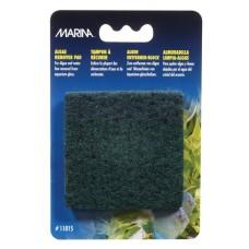 Marina Algae Remover Pad