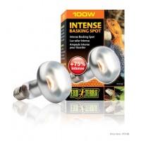 Exo Terra Intense Basking Spot - S25 / 100 W